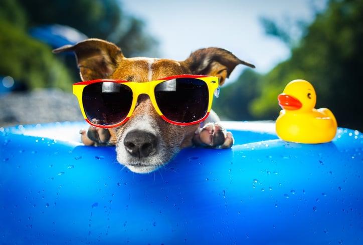 Summer-Marketing-Tips